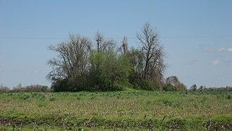 Nodena Phase - Chickasawba Mound