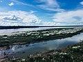Chin-dwin River.jpg