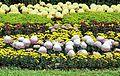 Chrysanthemum Exhibition in Shilin Residence Park 士林官邸菊展 - panoramio.jpg