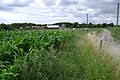Church Farm, Budbrooke - geograph.org.uk - 1403527.jpg