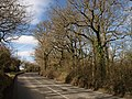 Clay Lane - geograph.org.uk - 1173149.jpg