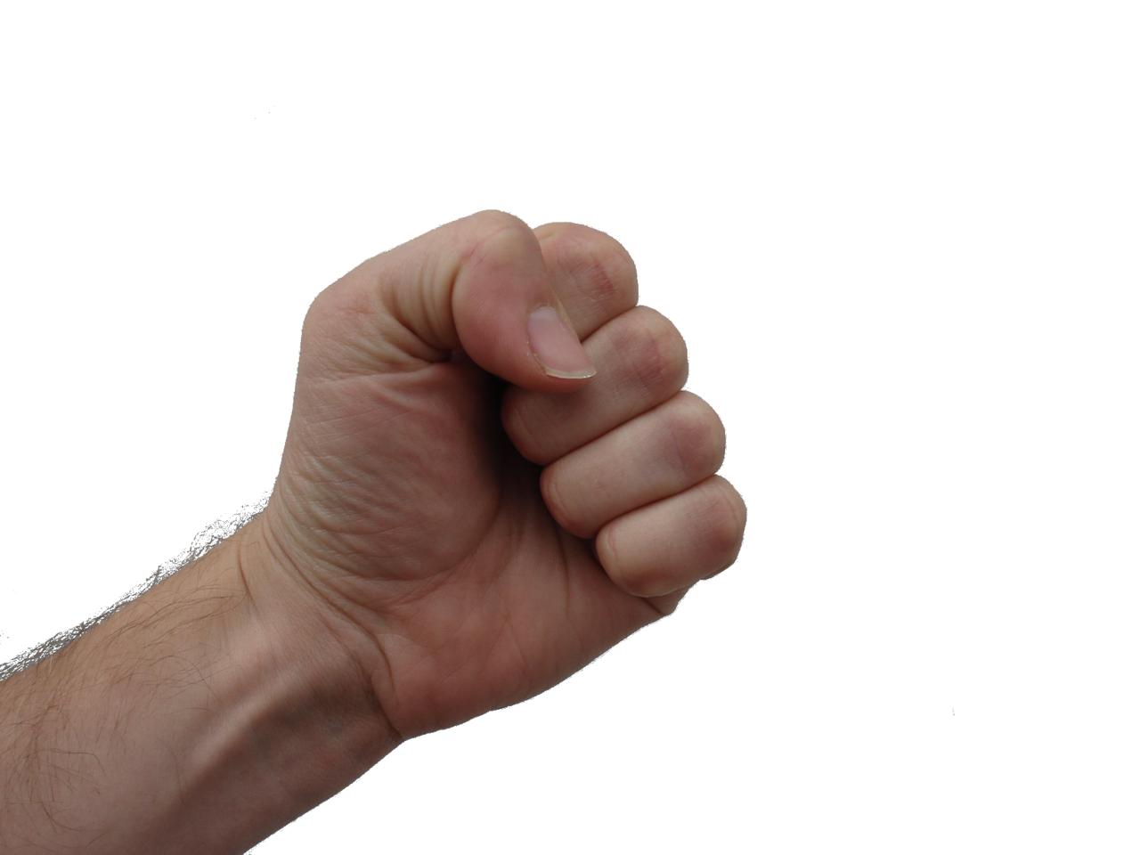 Image result for fist