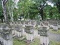 Cmentarz na Zaspie.jpg
