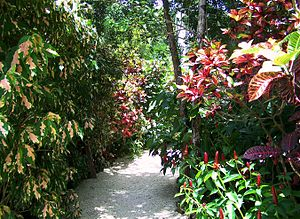 Queen Elizabeth II Botanic Park - Image: Color garden trail QEII botanic park