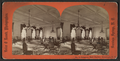 Congress Hall Parlor, Saratoga, N.Y, from Robert N. Dennis collection of stereoscopic views.png