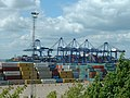 Containers and cranes - geograph.org.uk - 240634.jpg