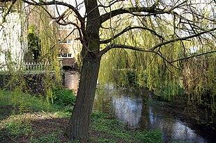 River Meon, Corhampton Mill