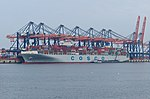 Cosco Line at Rotterdam Port (9284161815).jpg