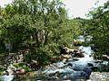 Cotobade-Rio Almofrey60 (4740962405).jpg