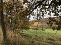 Couleurs d'automne sur les coteaux de Pamiers.jpg