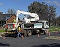 Country Energy linesmen 02.jpg