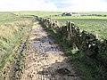 Cown Edge Way near Far Slack - geograph.org.uk - 1020047.jpg