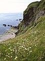 Crabrock Point - geograph.org.uk - 851045.jpg