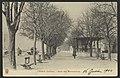 Crest (Drôme). - Quai des Marronniers (34407364332).jpg