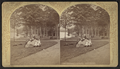 Crosbyside, the lawn, Lake George, by Stoddard, Seneca Ray, 1844-1917 , 1844-1917.png