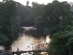 Cross River (Cameroon).jpg