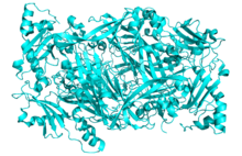 Crystal Structure of Human Diamine Oxidase.png