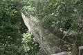 DSC01297 Rope bridge in Samoa.jpg