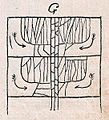 Das Kürschner-Handwerk, 3. Teil, S. 25, Verwendung der Marderabfälle (G).jpg
