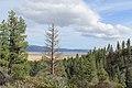 Davis Creek Park - panoramio (57).jpg