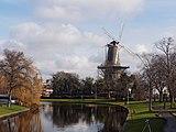 De Valk Leiden 6847.jpg
