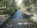 Delaware Water Gap National Recreation Area - Pennsylvania (5678363028).jpg
