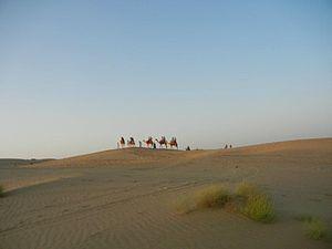 Basal rate - Image: Desert