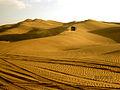Desert @ Dubai.jpg