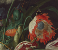 Detail Jan Davidsz. de Heem - Vase of Flowers - WGA11277.png