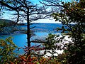 Devils Lake though the Trees - panoramio.jpg