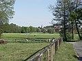 Die Schwingewiesen im Mai (2007-05) - panoramio.jpg