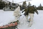 Digging deep, Marines with 2nd AA Bn. conduct avalanche training 160120-M-WI309-225.jpg