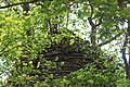 Dilapidated temple of Dalal para in Goghat PS, Hooghly district 14.jpg