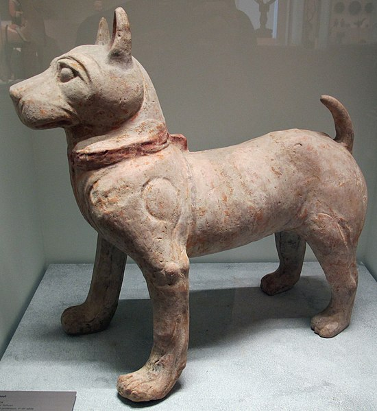 File:Dinastia han posteriore, cane stante, sichuan, I-III sec.JPG