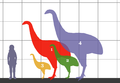 Dinornithidae SIZE 01.png