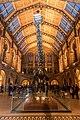 Dinosaurier Diploducus London (31488280284).jpg