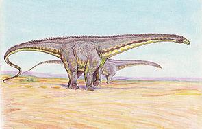 Lebendrekonstruktion des oberjurassischen Sauropoden Diplodocus