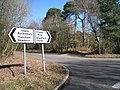 Direction signs on Bucklebury Common - geograph.org.uk - 1760986.jpg