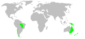 Distribution.micropholcommatidae.1.png