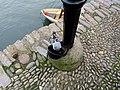 Drinking Pigeon, Bayard's Cove.jpg