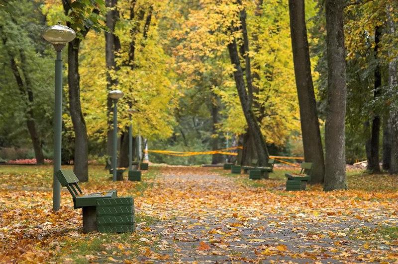 Druskininkai pusyno parkas