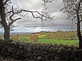 Drystone wall and shallow valley - geograph.org.uk - 1583171.jpg