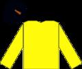 Duke of Westminster Racing Silks.png