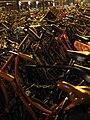 Dutch Bicycle Station At Night (144480563).jpeg