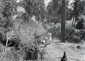 ETH-BIB-Abessinisches Dorf-Abessinienflug 1934-LBS MH02-22-0506.tif