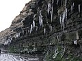 East Quantoxhead cliffs - geograph.org.uk - 1110531.jpg