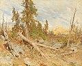 Eduard Peithner von Lichtenfels - Windthrow.jpg