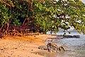 El Nido, Palawan, Philippines - panoramio (34).jpg
