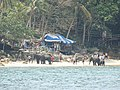 Elephants on beach in Phuket Thailand (45021819215).jpg