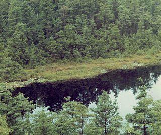 Ell Pond (Rhode Island)